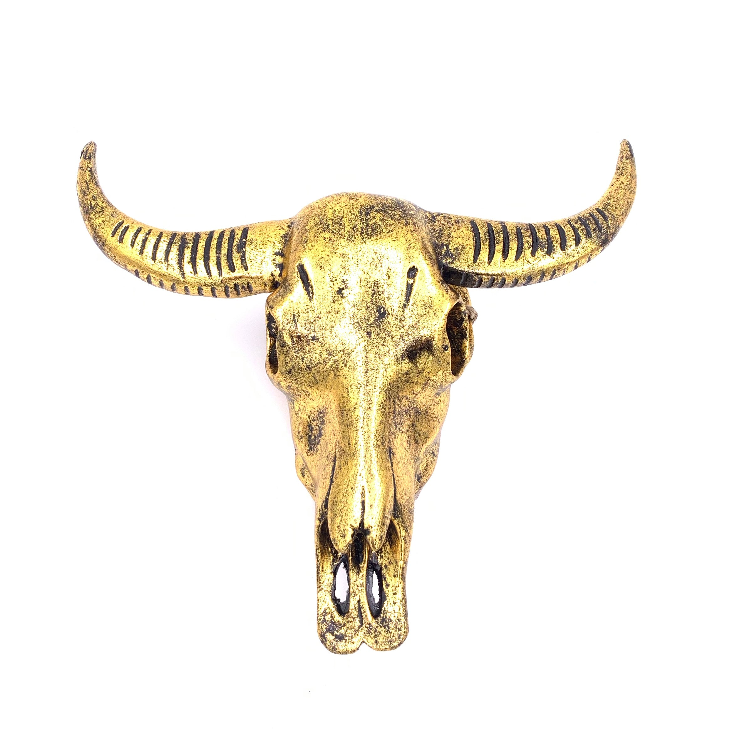 Buffalo Skull (Resin) - Black Gold