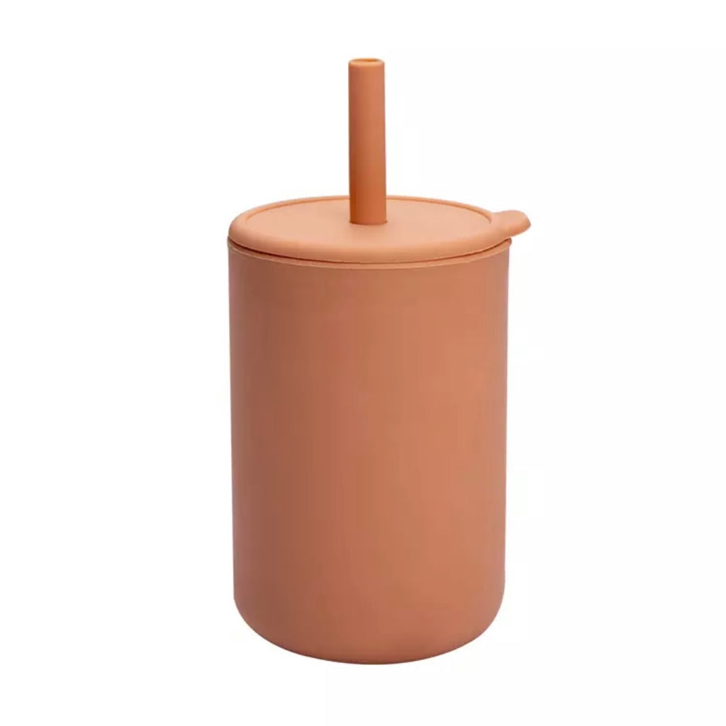 BPA Free Silicone Sippy Cup with Straw in Peach