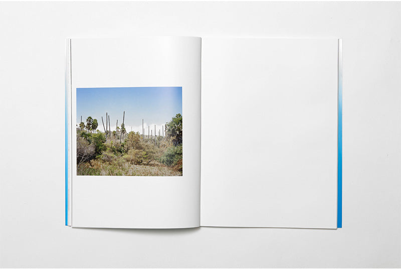 164° On the Equator, Charles Negre & Thomas Rousset - The Library Project