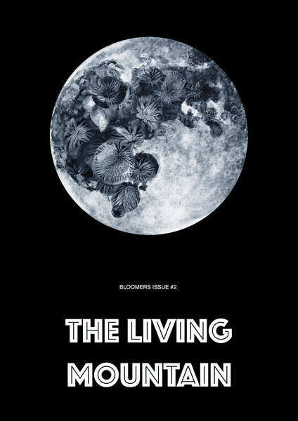 Bloomers Magazine Issue 2: The Living Mountain - The Library Project