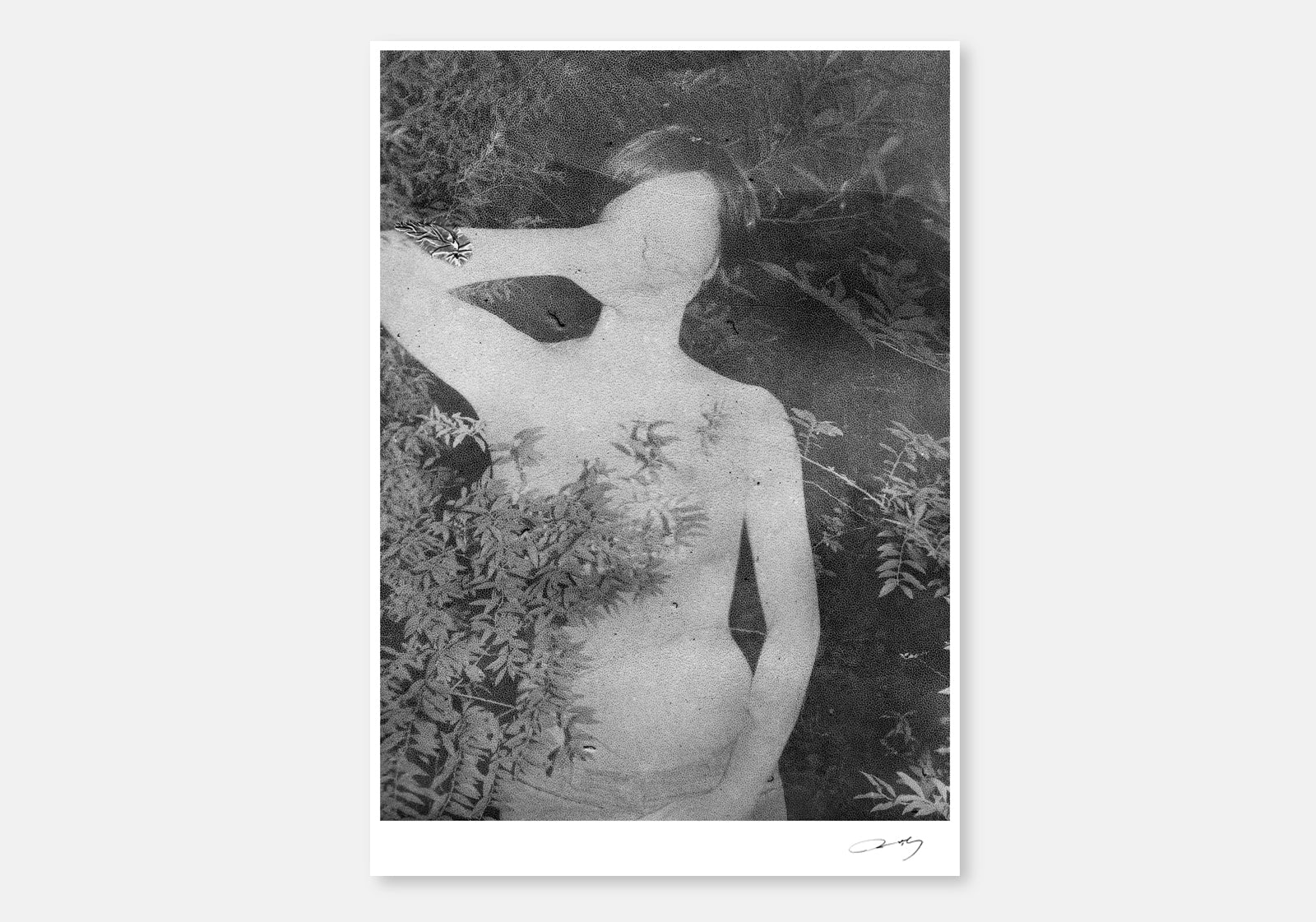 Untitled, Daisuke Yokota, (Unframed, Numbered, Signed) - The Library Project
