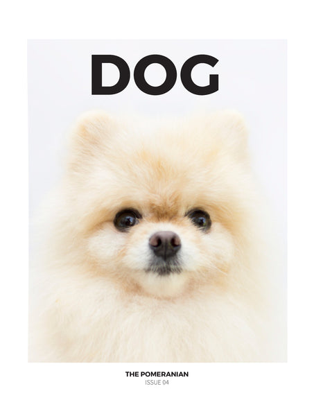 DOG Magazine Issue 4: The Pomeranian - The Library Project
