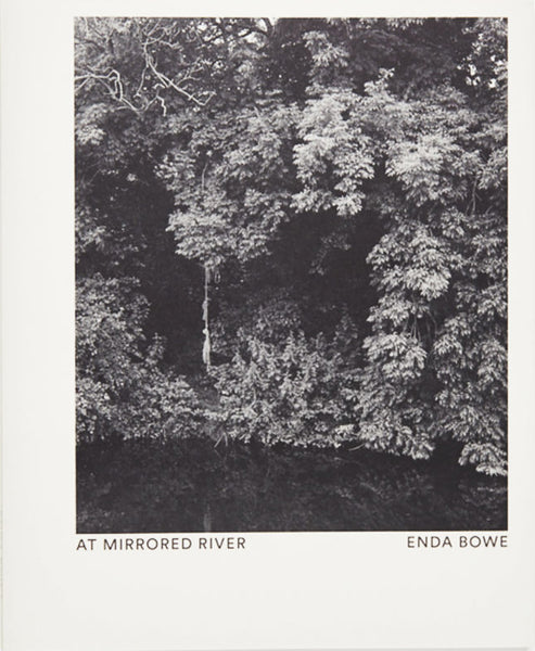 Enda Bowe, At Mirrored River - The Library Project