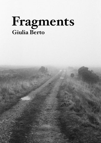 Fragments, Guila Berto