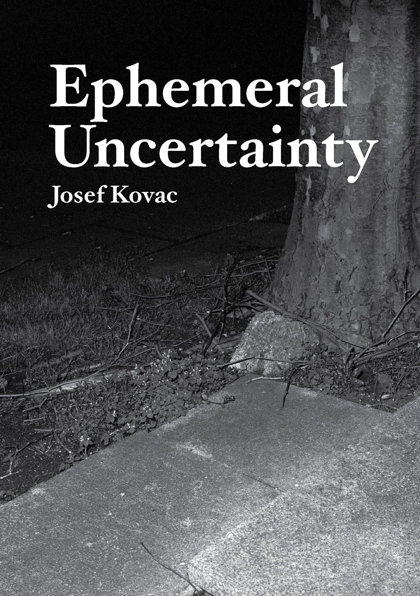 Ephemeral Uncertainty, Josef Kovac - The Library Project