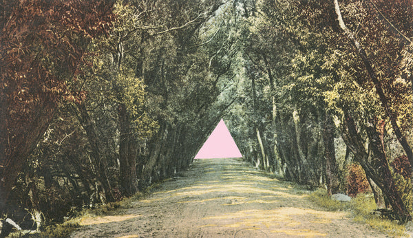Pink Triangle, Laura McMorrow (Unframed) - The Library Project