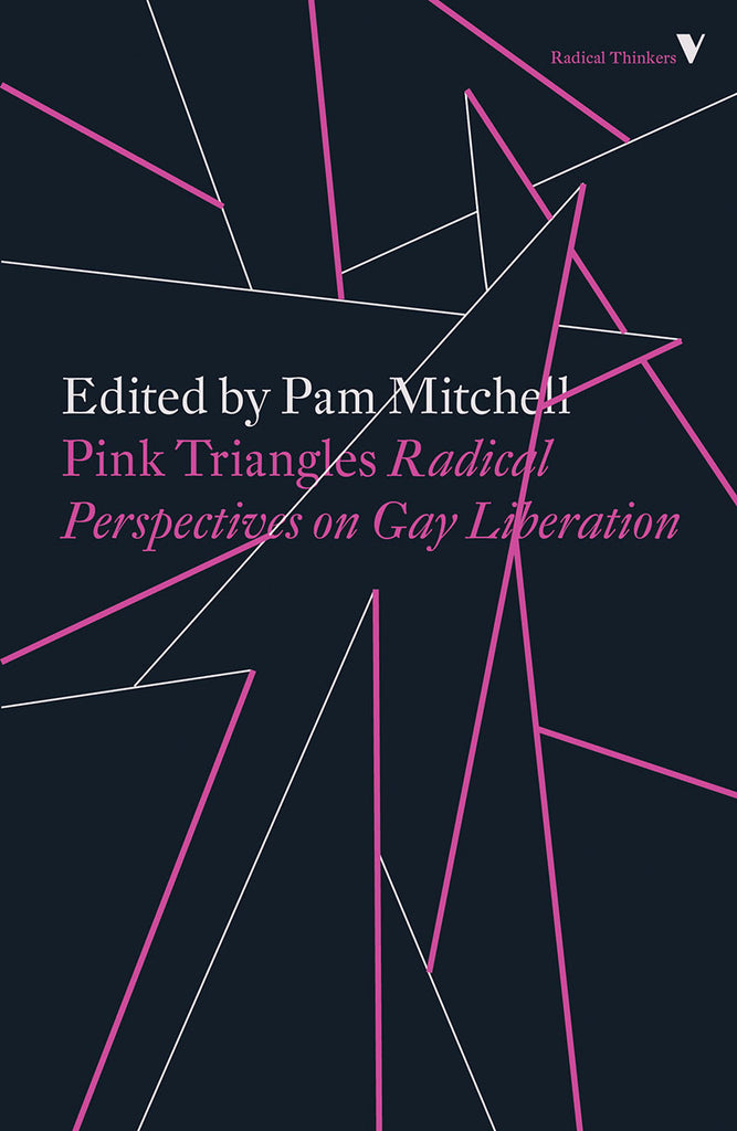 Pink Triangles: Radical Perspectives on Gay Liberation