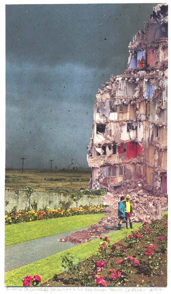 Controlled Demolition in The Rose Garden, Sean Hillen (Unframed) - The Library Project