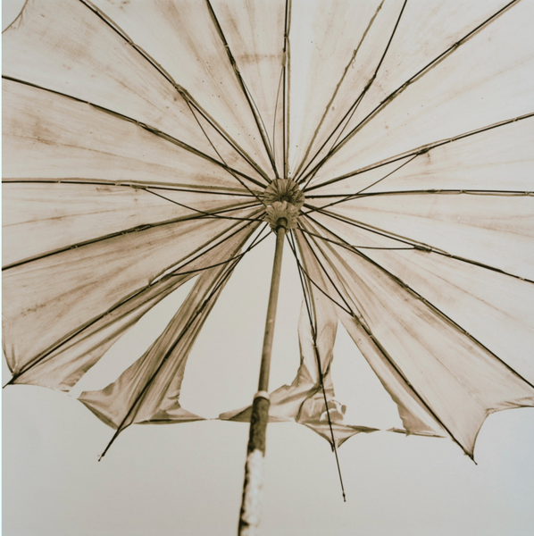 Parasol, Brian McIlveny (Unframed) - The Library Project