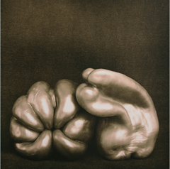 Peppers, Brian McIlveny (Unframed) - The Library Project