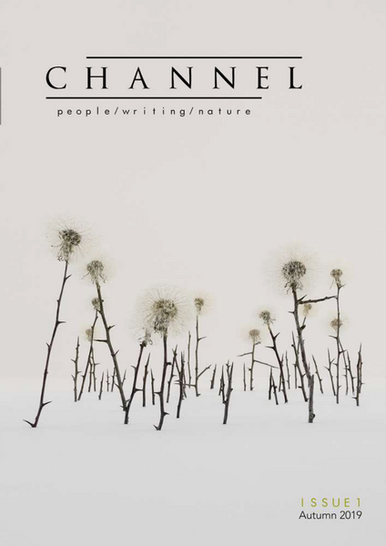 Channel Issue 1