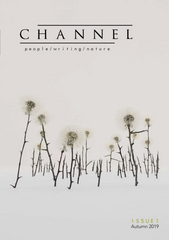 Channel Issue 1 - The Library Project