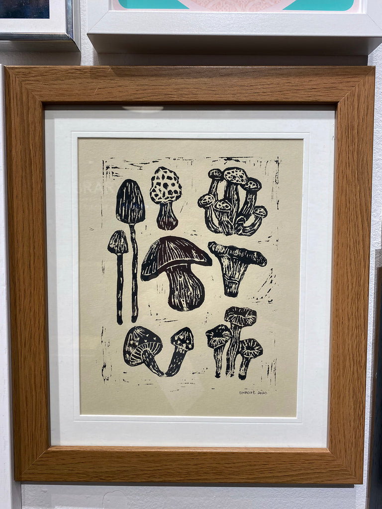 Sinaoife Andrews, Mushrooms