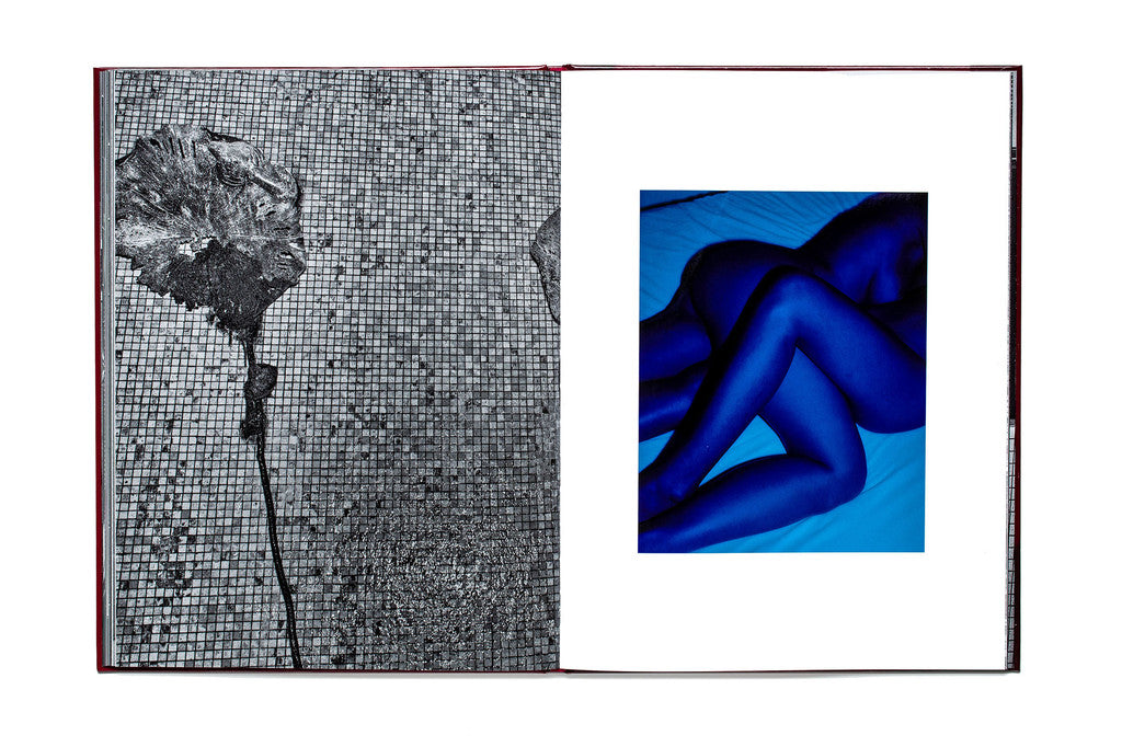 Sunless (Blue Edition), Tiane Doan na Champassak (Signed) - The Library Project