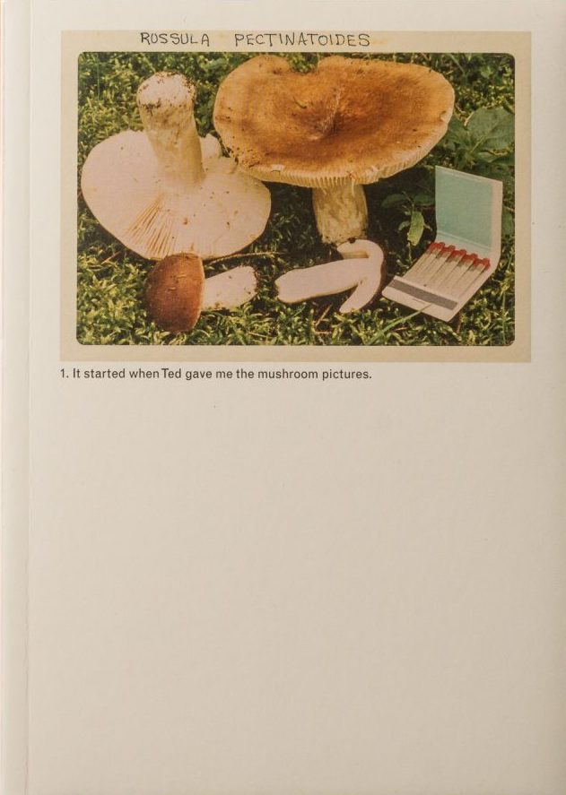 The Mushroom Collector, Jason Fulford