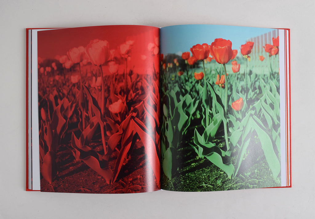 Tulips, Andrew Miksys - The Library Project