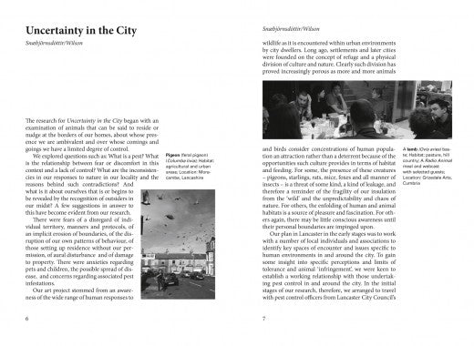 Uncertainty in the City - Bryndis Snæbjörnsdóttir and Mark Wilson - The Library Project