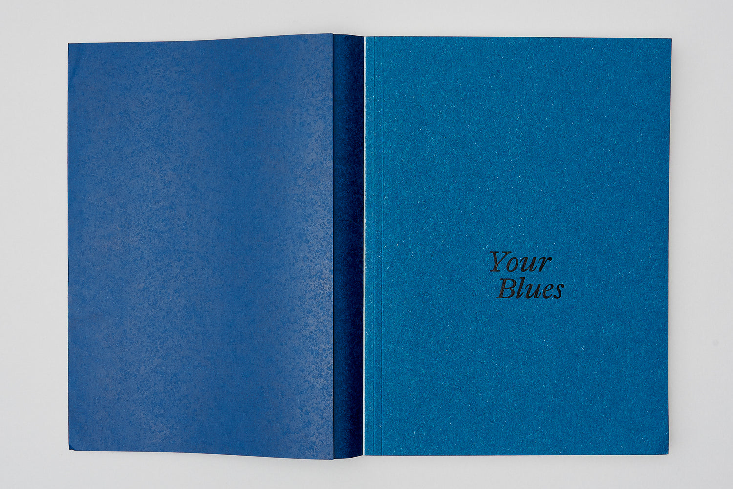 Your Blues, Michael Schmelling