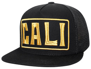 N21CA139- Structured Mesh Back Cali Bear Logo Snapback