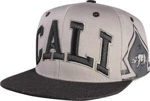 N21CA124- 2 Tone Structured Cotton Cali Short Name With Side Panel Printed Bear Logo Designed Snapback