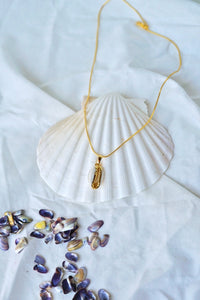 BORNEO Cowrie Shell Pendant Necklace Gold