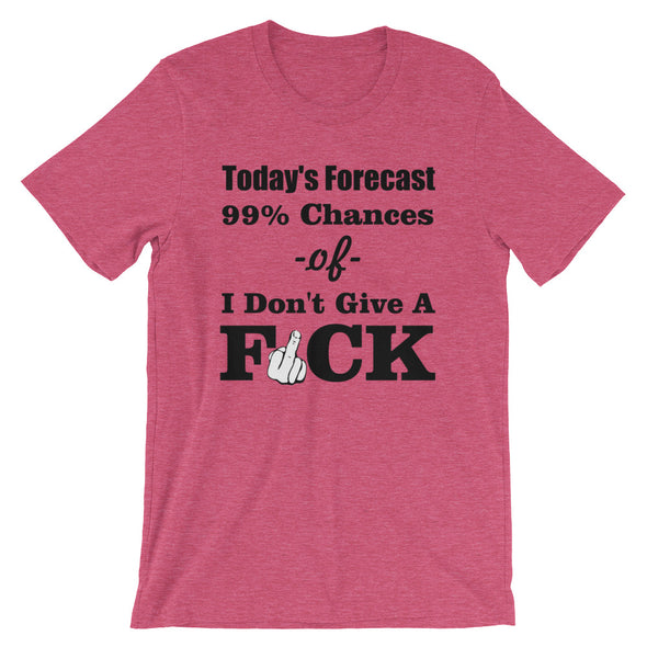 Today's Forecast 99% Chances of I Don't Give A T-Shirt