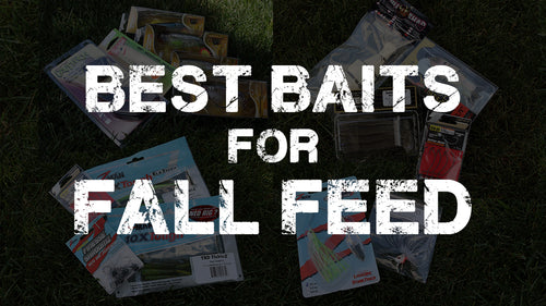 Early Fall Baits You Need to Try!