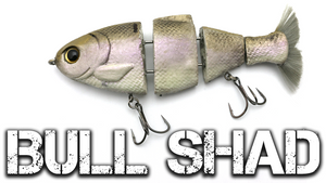 Fishing with Bull Shad Swimbaits