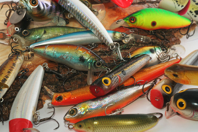 Which Freshwater Lure is the Right Choice?