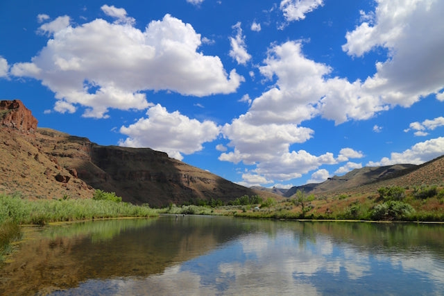 Top 3 Places to Fish in Eastern Oregon