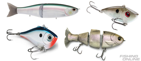 Winter Striped Bass and Hybrid Fishing Lures