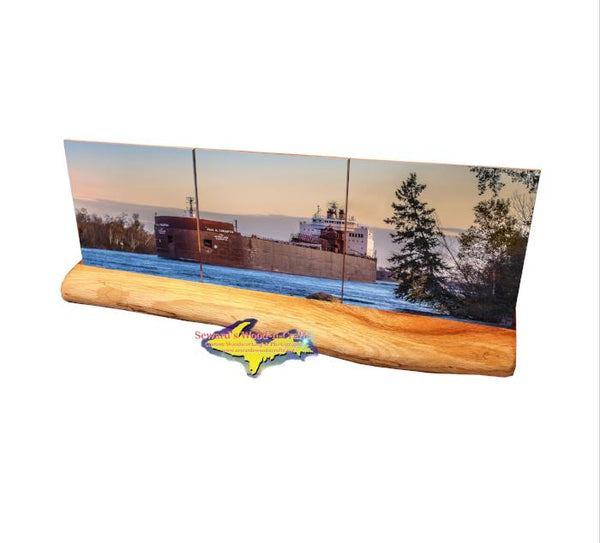 Paul Tregurtha Lake Freighter Panoramic Coaster Sets For Boat Nerd Fans