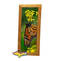 Wildlife Monarch Butterfly Michigan Made Framed Art Tiles Home Office Decor