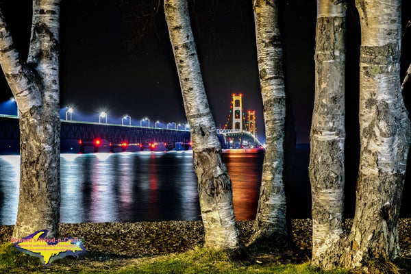 Michigan Landscape Photography Mackinac Bridge Birch Trees Artwork For Sale