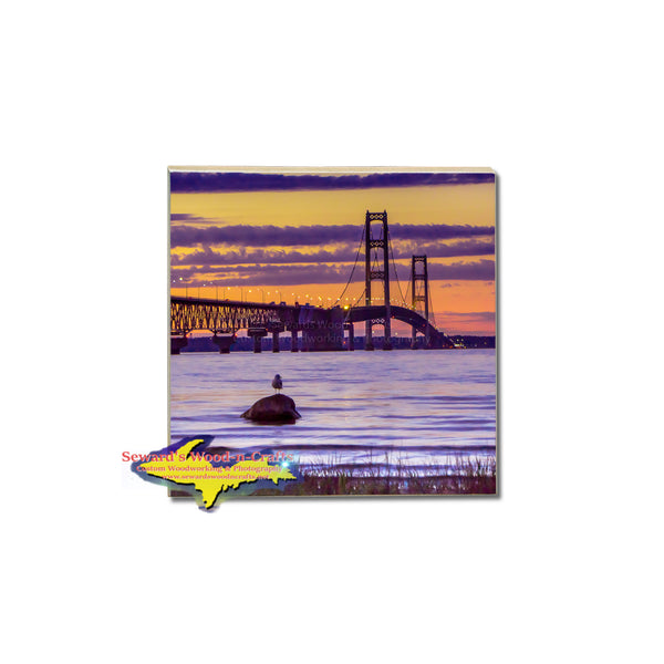 Michigan Coasters with Michigan photos
