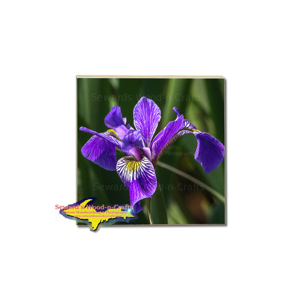 Wild Iris Flower Coasters for Home Kitchen decor
