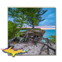 Michigan Drink Coasters Chapel Rock Roots Best Pictured Rocks Gifts, & Collectibles