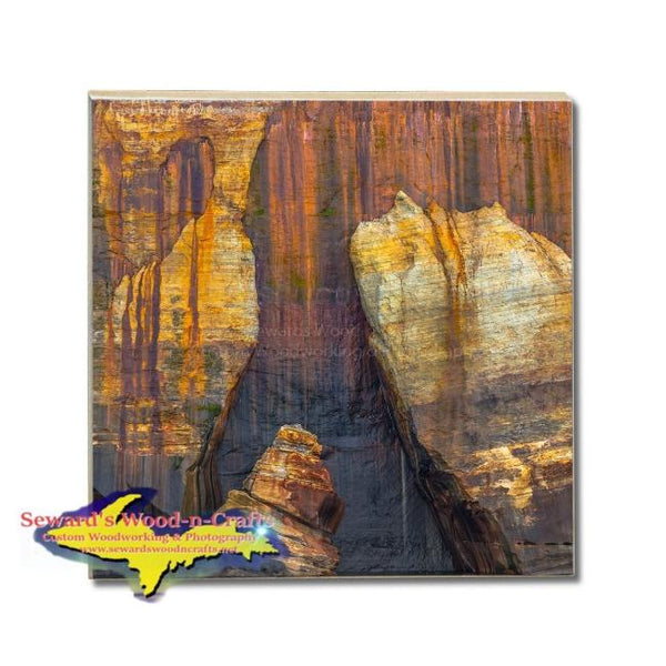 Drink Coaster Painted Rocks Pictured Rocks Gifts & Collectibles