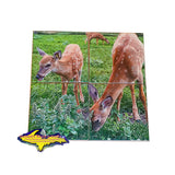 Michigan Coasters Wildlife Doe deer and fawn on a four piece coaster set