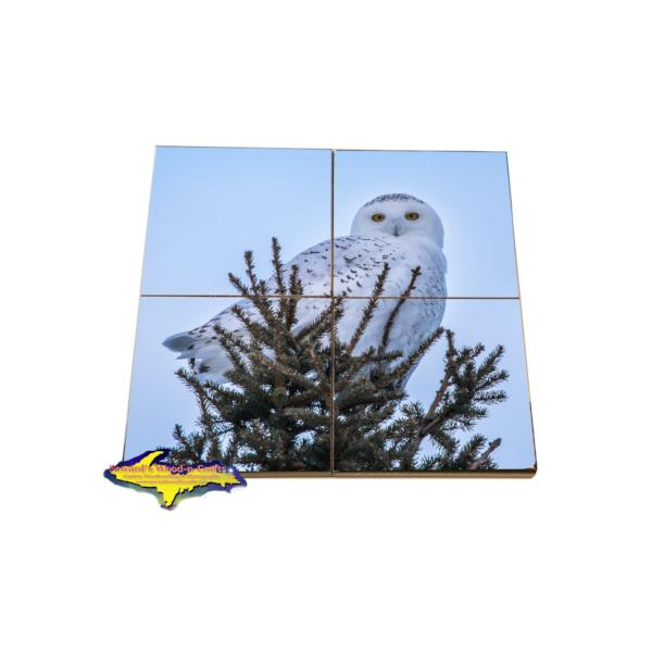 Snowy Owl Puzzle Coaster Unique inexpensive wildlife gifts for the family and friend to share