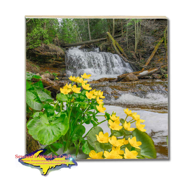 Michigan Made Drink Coasters Wagner Waterfalls & Marsh Marigold Michigan's Upper Peninsula Gifts & Collectibles
