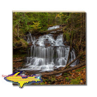 Michigan Made Drink Coaster Waterfalls Wagner Upper Peninsula Collectibles & Gifts