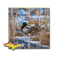 Michigan Drink Coasters Wildlife Mallard Duck Michigan Made Gifts