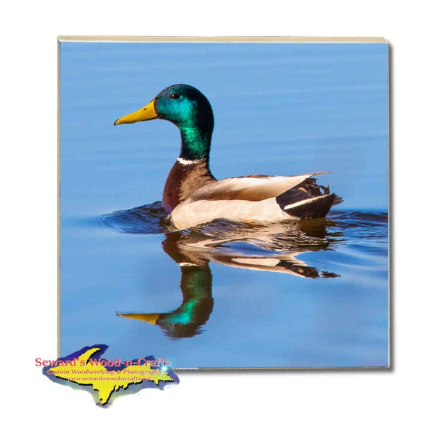 Michigan Wildlife Drink Coasters Mallard Duck Michigan Made Gifts & Collectibles