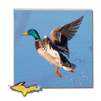 Michigan Wildlife Drink Coasters Mallard Duck Gifts For Duck Hunters