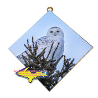 Snowy Owl Michigan Wildlife Wall Art