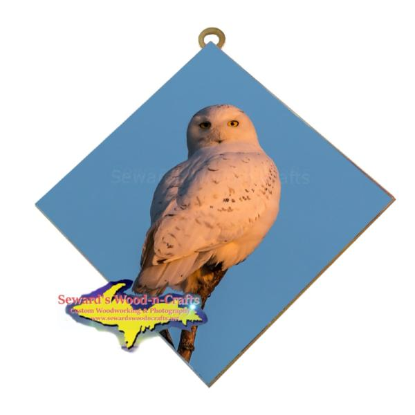 Snowy Owl Wildlife Wall Art Hanging Tiles Wildlife Photography And Photo Gifts