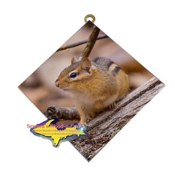 Wildlife Photography Chipmunk Hanging Art Tile Cute and affordable Michigan Made Gifts