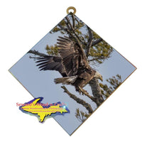 Michigan Wall Art Wildlife Photography Eagle Landing Hanging Art Tile
