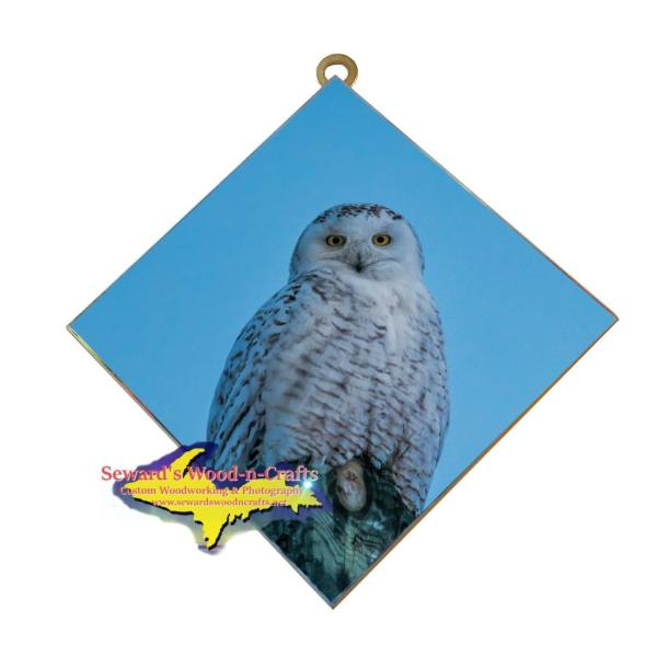 Snowy Owl Wildlife Wall Art Hanging Photo Tiles Home Decor & Design